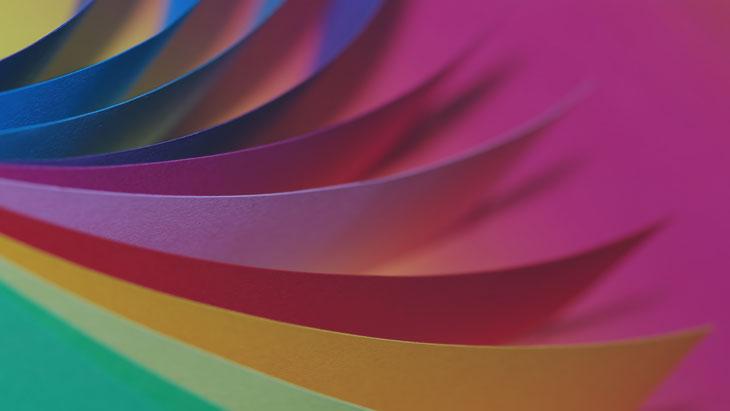 Bukletų plati spalvų įvairovė